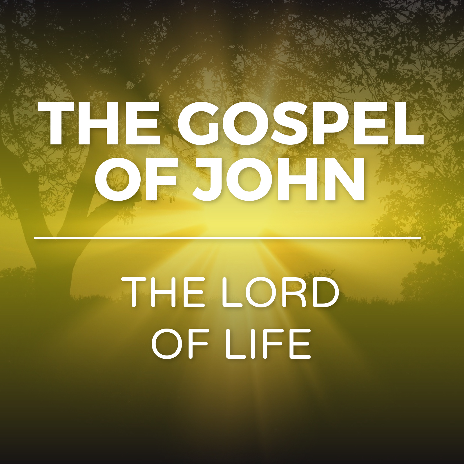 The Gospel of John - Lord of Life Sermon Series - Hope Church Huddersfield