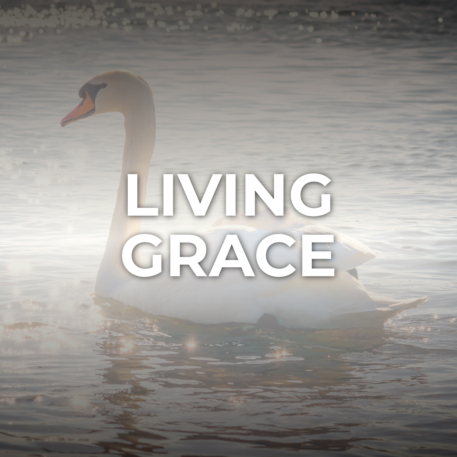 Living Grace Sermon Series - Hope Church Huddersfield